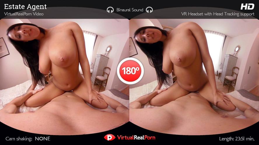 VR Porn Estate Agent