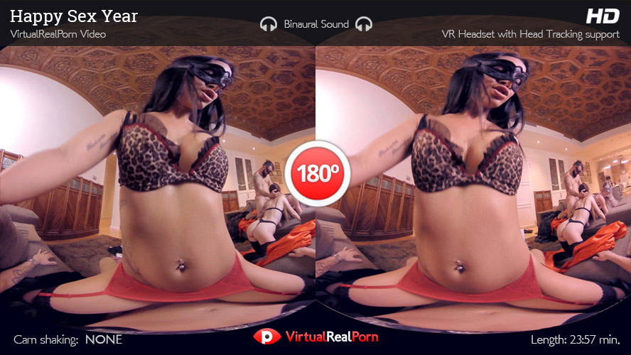 VR Porn Happy Sex Year