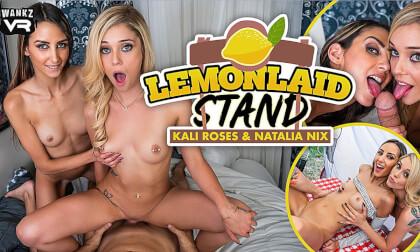 VR Porn LemonLaid Stand