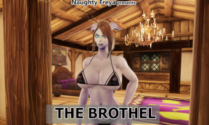 VR Porn The Brothel