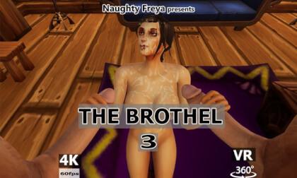 VR Porn The Brothel 3