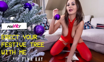 VR Porn Erect Your Festive Tree With Me