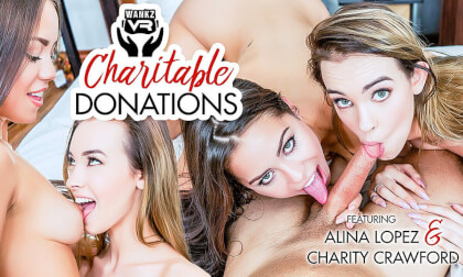 VR Porn Charitable Donations