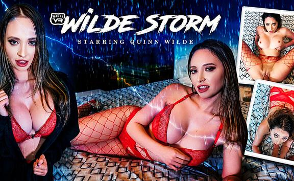 VR Porn Wilde Storm